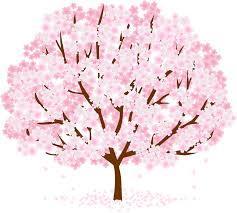 川西大霊苑 平成30年の桜