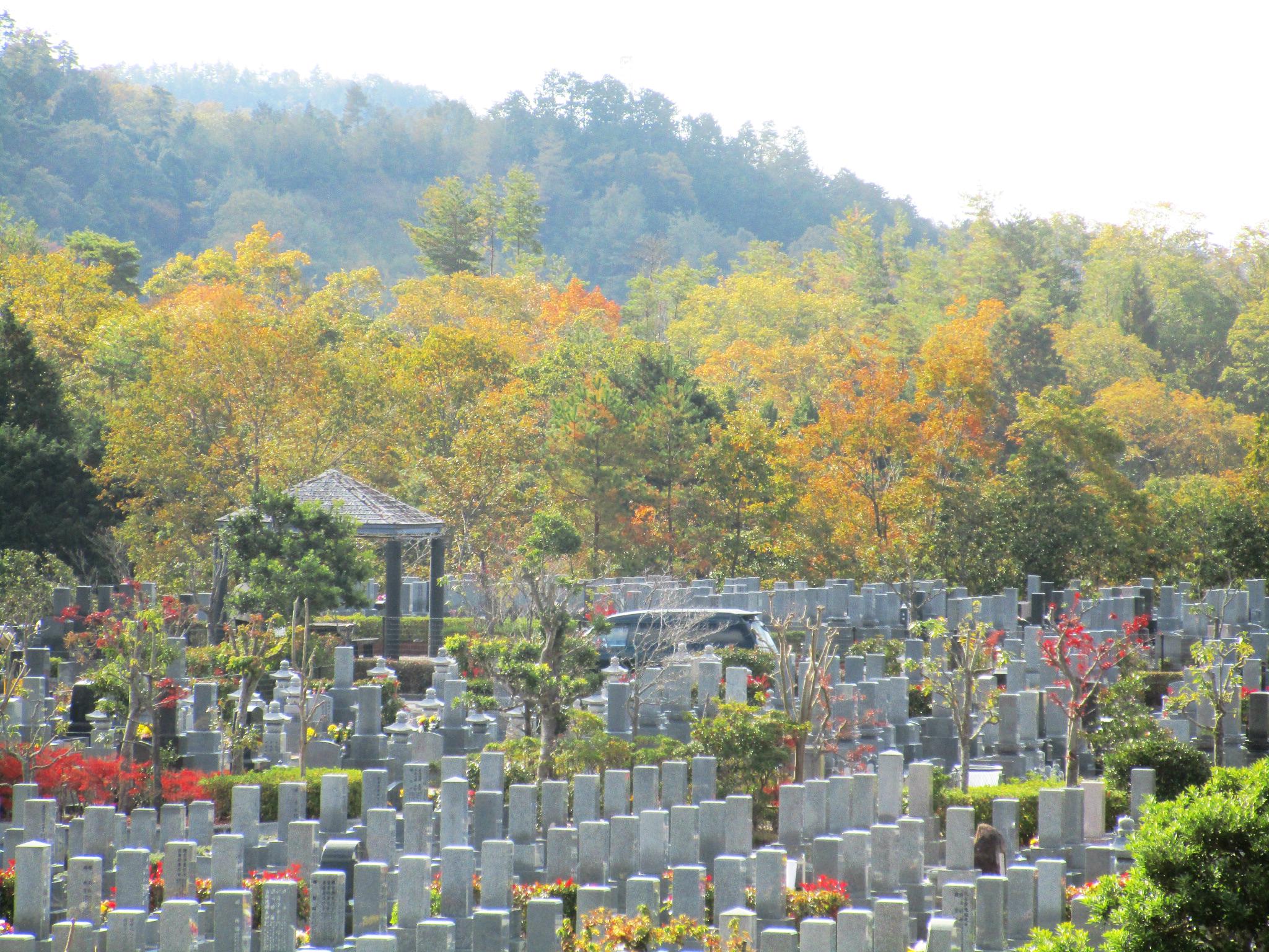 川西大霊苑 平成30年 紅葉の様子